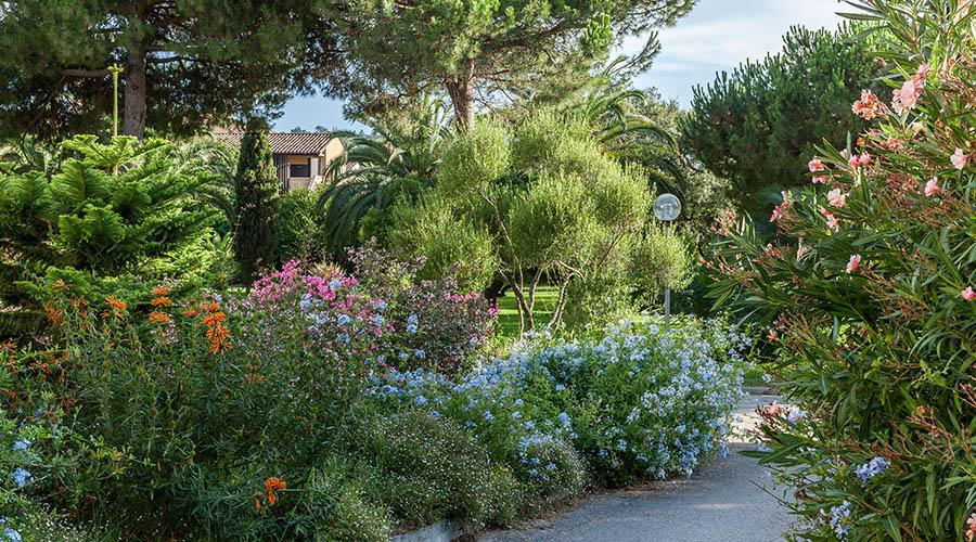 France - Corse - Porticcio - Hôtel Club Marina Viva 3*